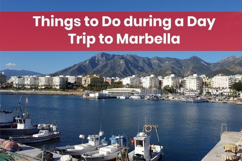 day trip to marbella