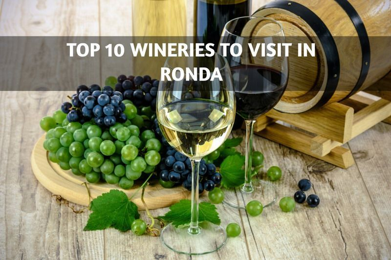 Top 10 Wineries to Visit in Ronda
